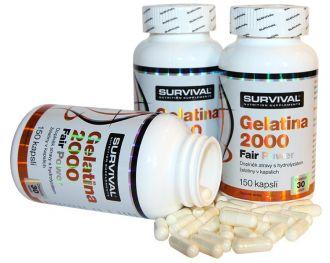 Survival Gelatina 2000 Fair Power