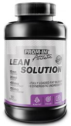 Sicht - PROM-IN LEAN SOLUTION